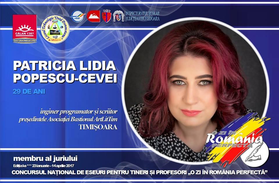 """Cum a fost experiența de jurat la concursul de eseuri """"O Zi în România Perfectă"""""""