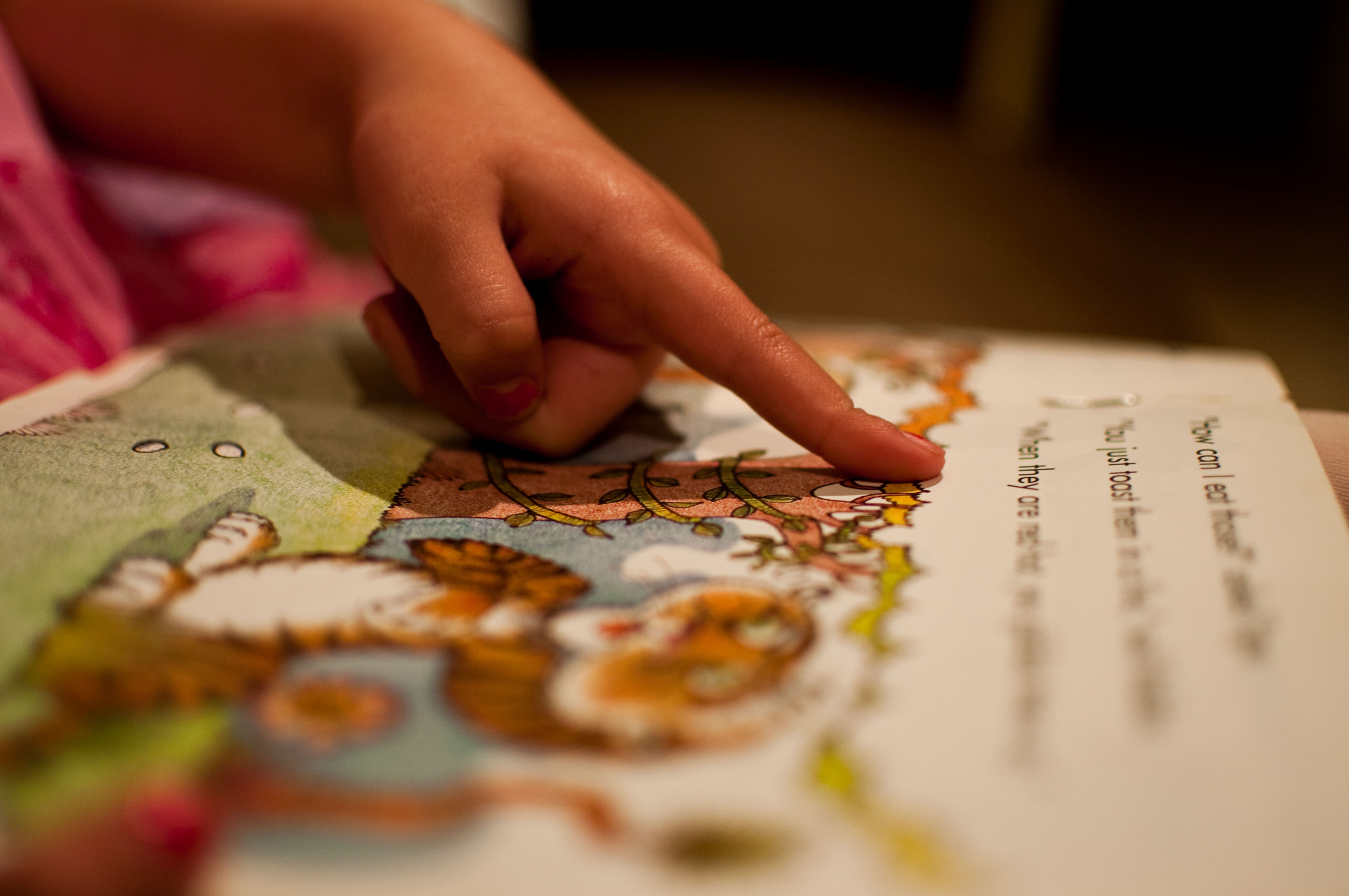Ce activități putem face pe baza cărților cu ilustrații?
