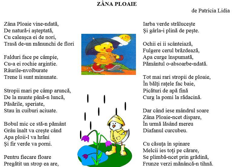 Zana ploaie, poezie de Patricia Lidia