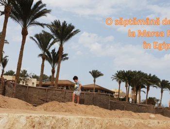 O săptămână de concediu la Marea Roșie, în Egipt